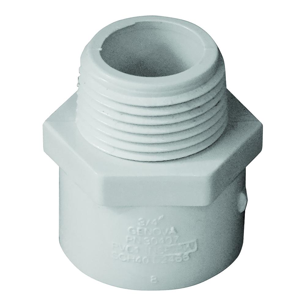 Picture of GENOVA 300 30407 Pipe Adapter, 3/4 in, Slip x MIP, PVC, White, SCH 40 Schedule