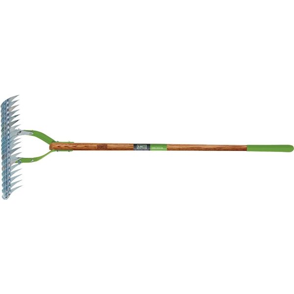 Picture of AMES 2915100 Thatch Rake, 15 in W Head, 19 -Tine, Steel Tine, 54 in L Handle