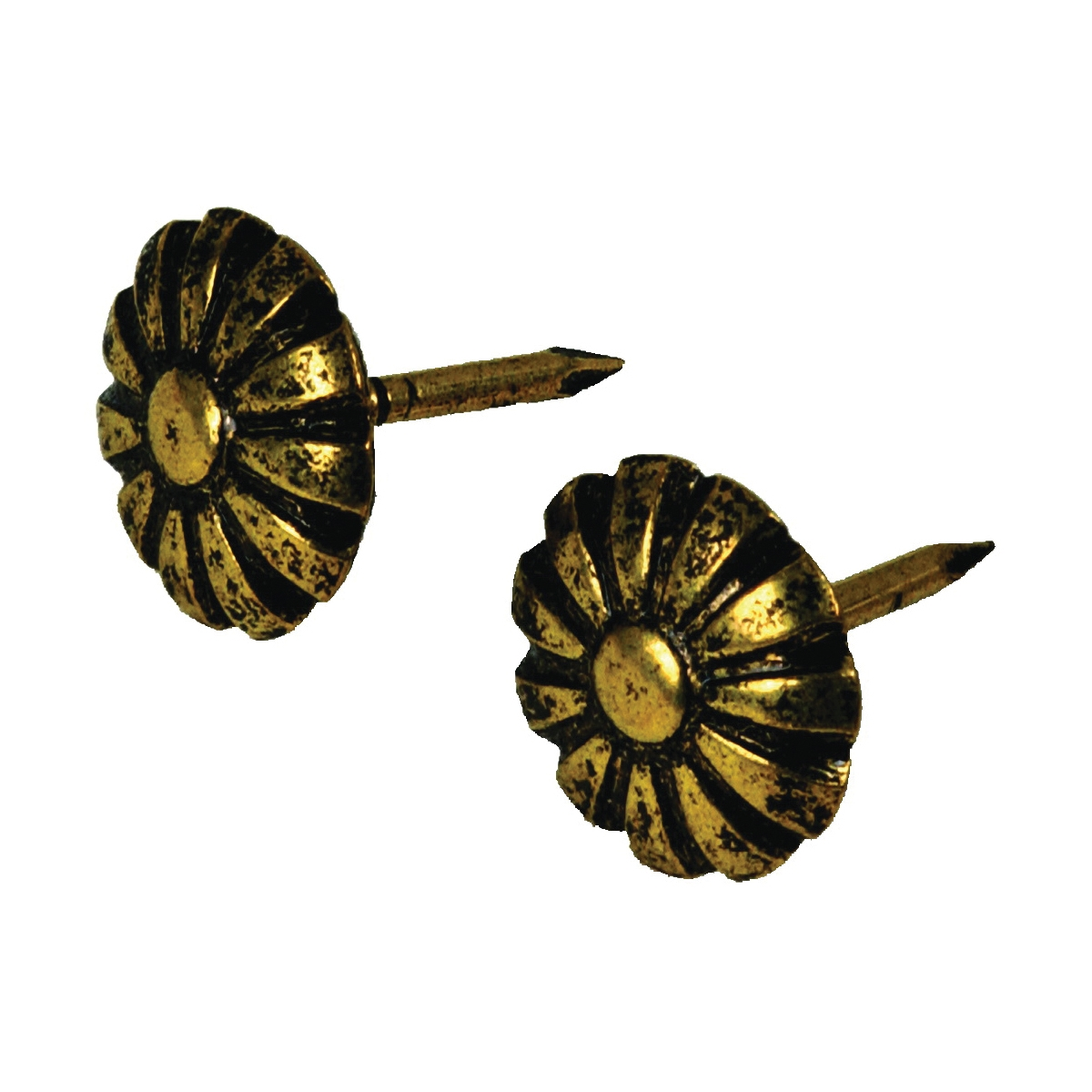 Picture of HILLMAN 122681 Furniture Nail, Antique Brass, Daisy Head, Snap-Pak