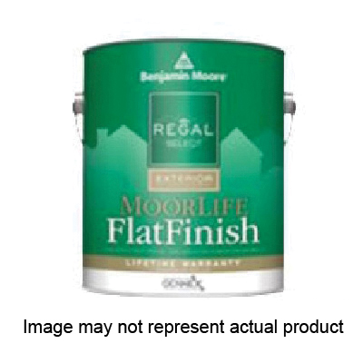 Picture of Benjamin Moore MoorLife W1054X-001 Exterior Paint, Flat, 1 gal Package, Pail