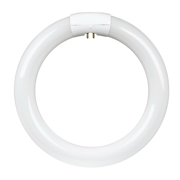 Picture of Feit Electric FC8T9/WW Fluorescent Circular Bulb, 22 W, T9 Lamp, 4-Pin G10Q Lamp Base, 1150 Lumens