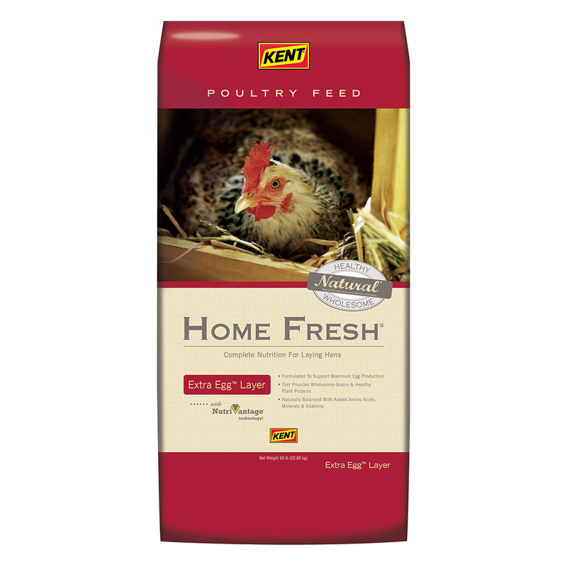 Picture of Kent Home Fresh 641001 Extra Egg Layer Supplement, Crumble, Pellet, 50 lb Package, Bag