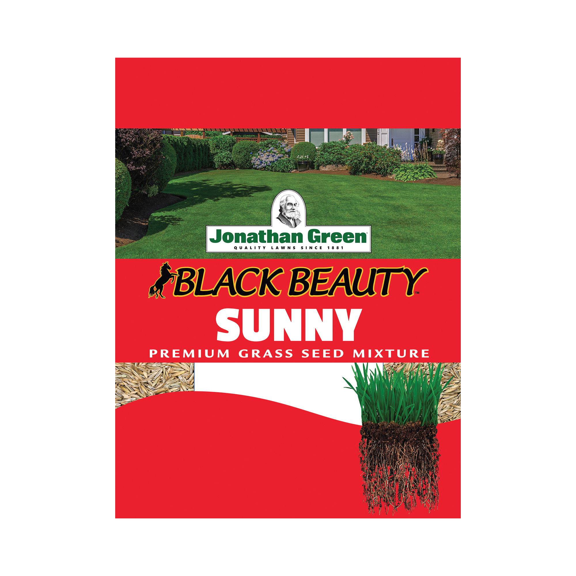 Picture of Jonathan Green Black Beauty 10860 Grass Seed, 3 lb Package, Bag