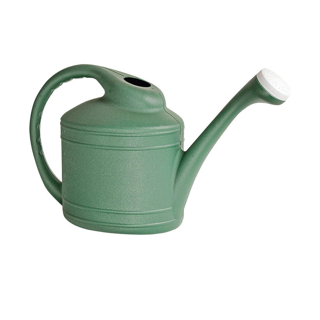 Picture of Southern Patio WC8108FE Watering Can, 2 gal Can, Resin, Fern