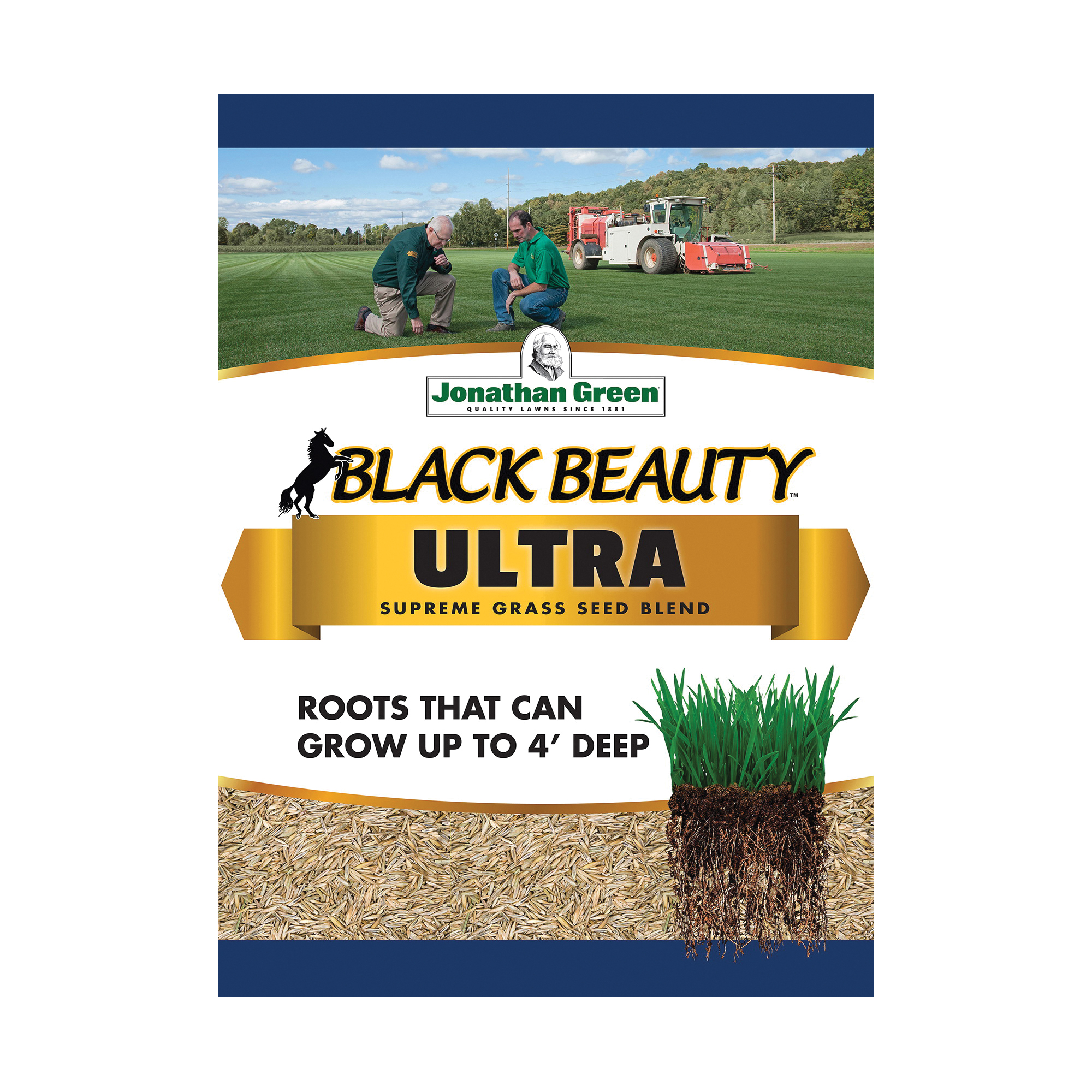 Picture of Jonathan Green Black Beauty 10321 Grass Seed, 3 lb Package, Bag