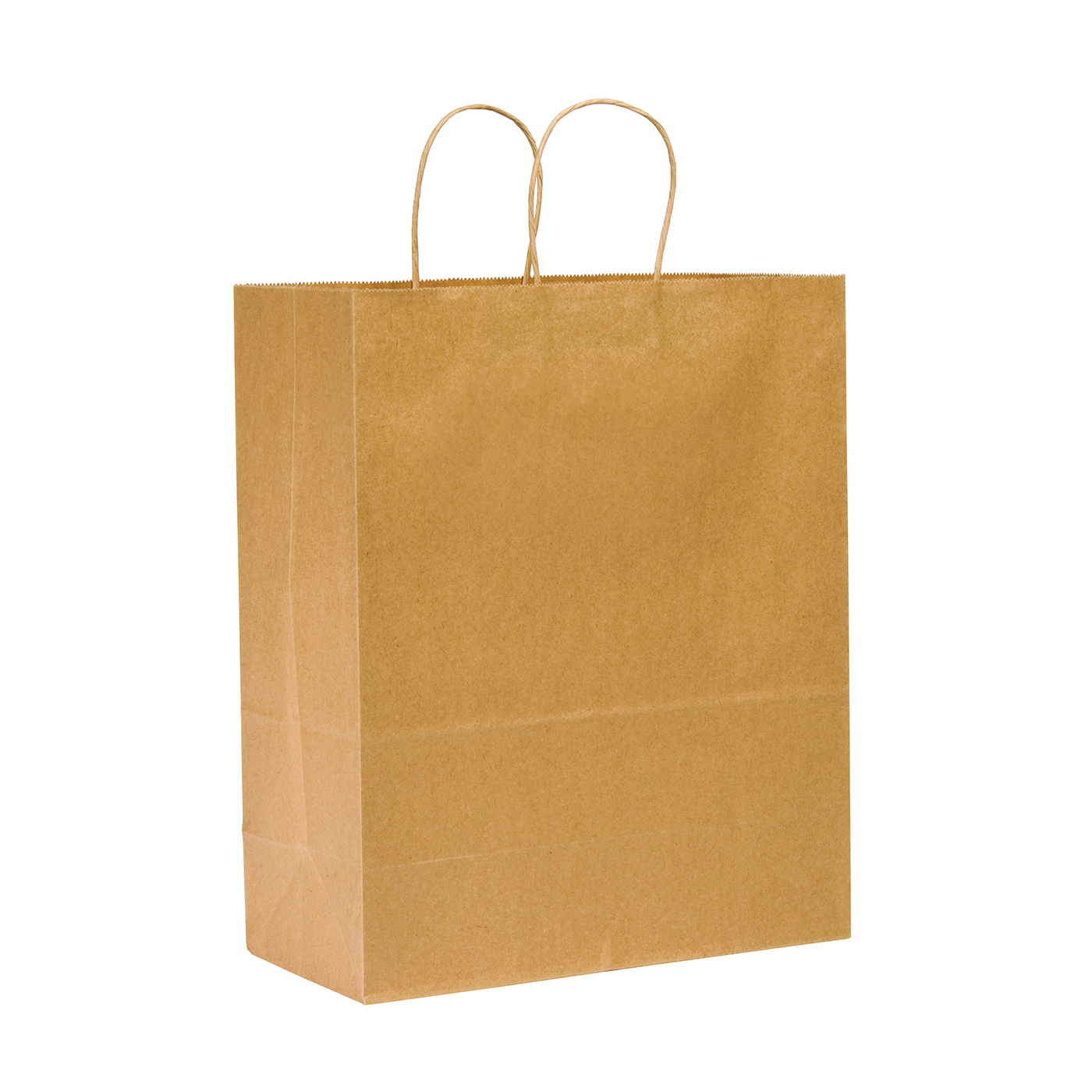 Picture of Duro Bag Dubl Life 87128 Shopping Bag, 65 lb Capacity, Kraft Paper, Brown, 250, Pack