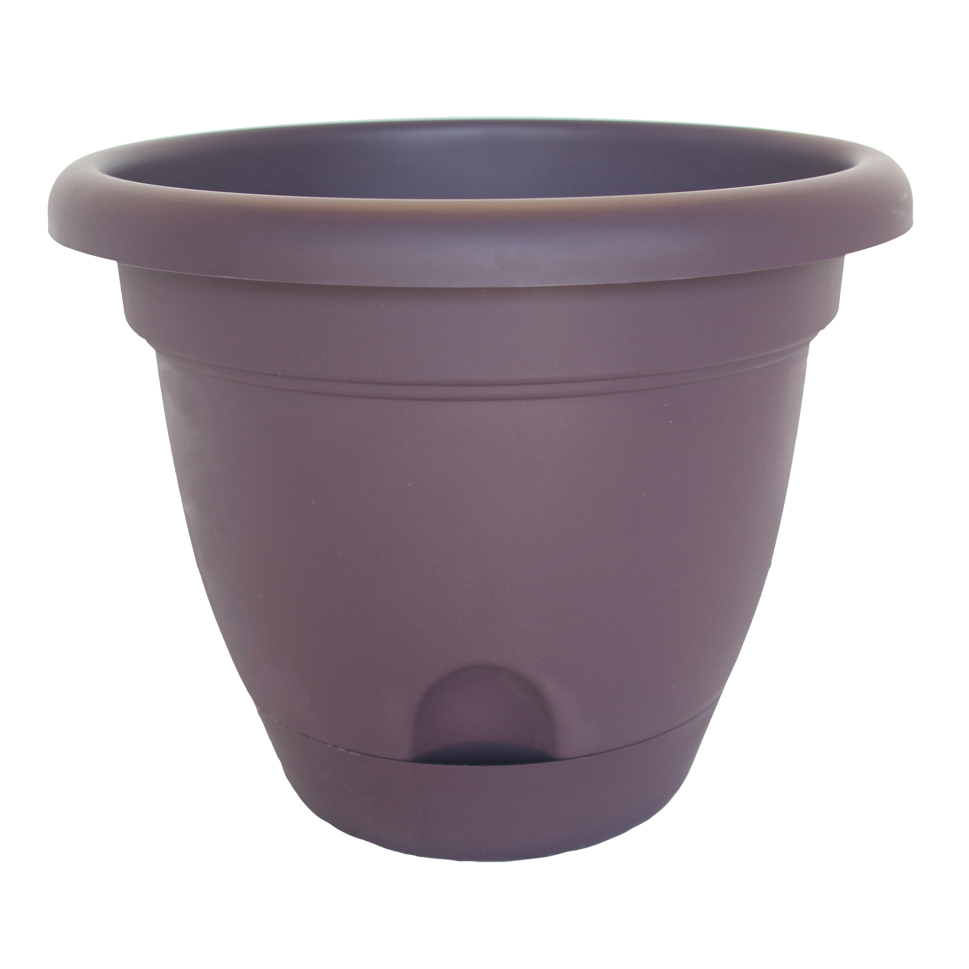 Picture of Bloem Lucca LP0656 Planter, 5.3 in W, Polypropylene, Exotica