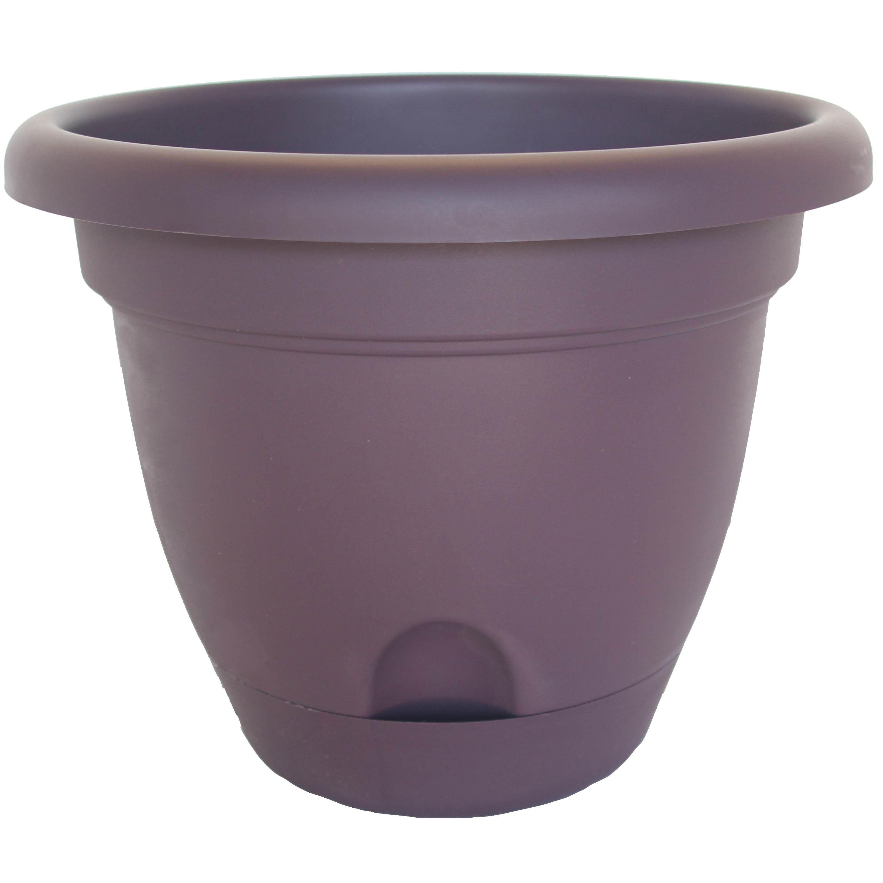 Picture of Bloem Lucca LP1056 Planter, 8.8 in W, Polypropylene, Exotica