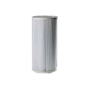 Picture of Pentair OMNIFilter RS6-SS2-S06 Filter Cartridge, 30 um Filter, Polyester Filter Media, Pleated Paper