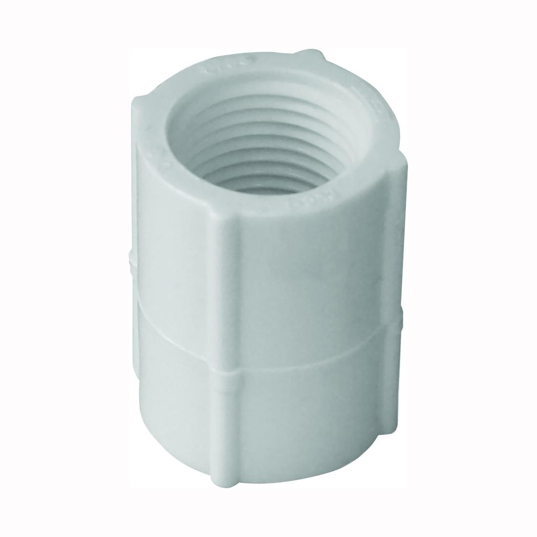 Picture of GENOVA 300 Series 30125 Pipe Coupler, 1/2 in, FIP, White, SCH 40 Schedule, 600 psi Pressure