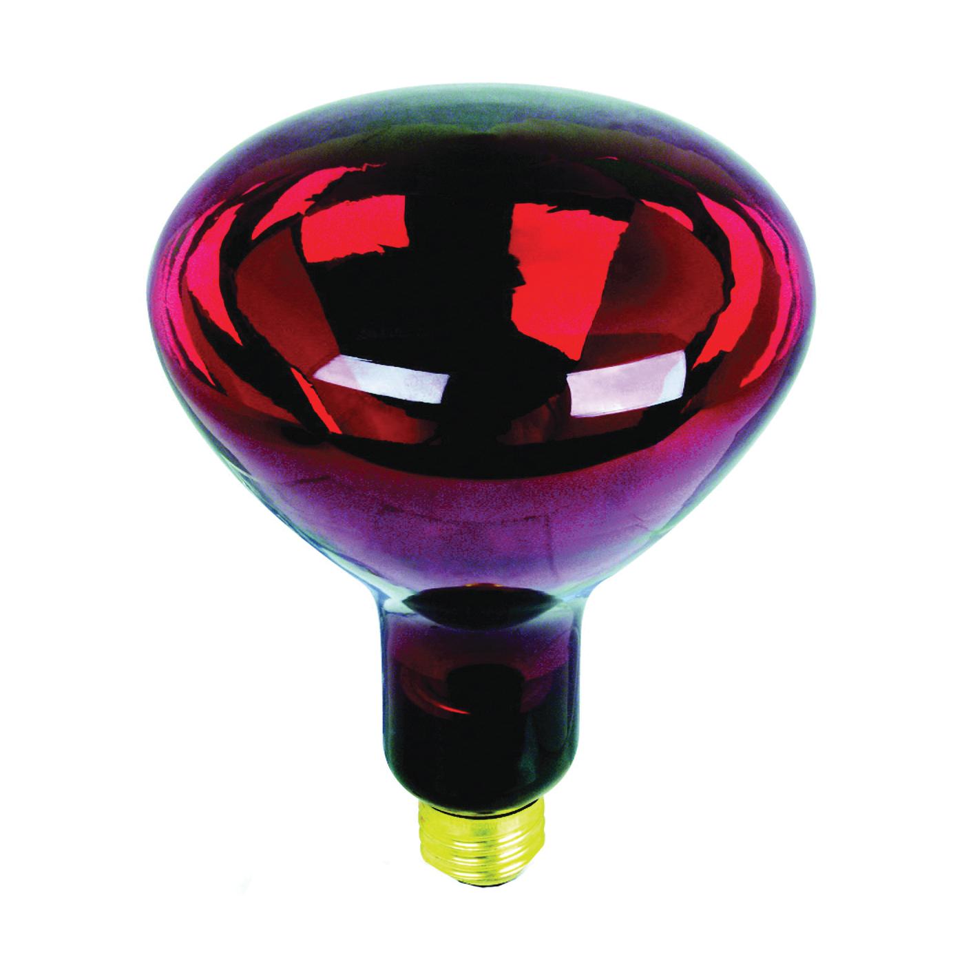 Picture of Feit Electric 250R40/R/2 Incandescent Lamp, 250 W, R40 Lamp, Medium E26 Lamp Base, 2700 K Color Temp