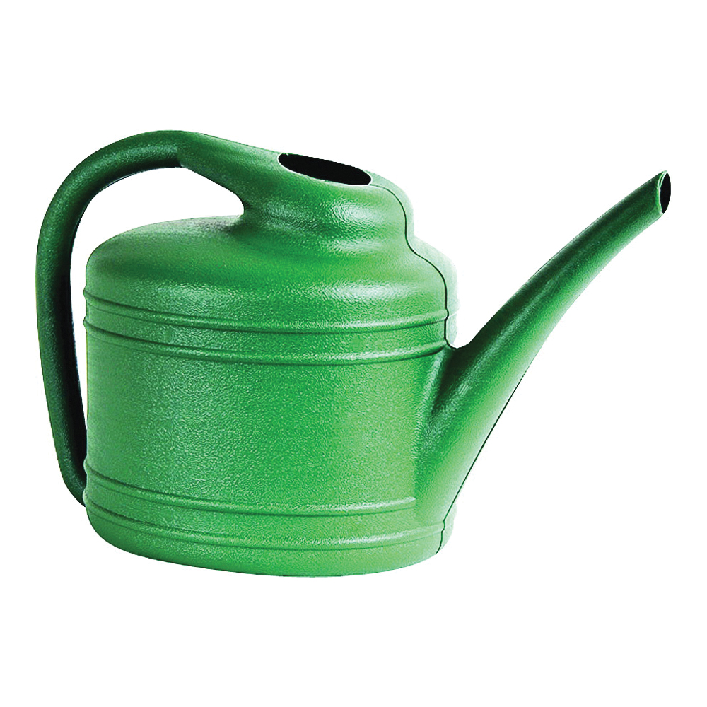 Picture of Southern Patio WC4012FE Watering Can, 1 gal Can, Resin, Fern