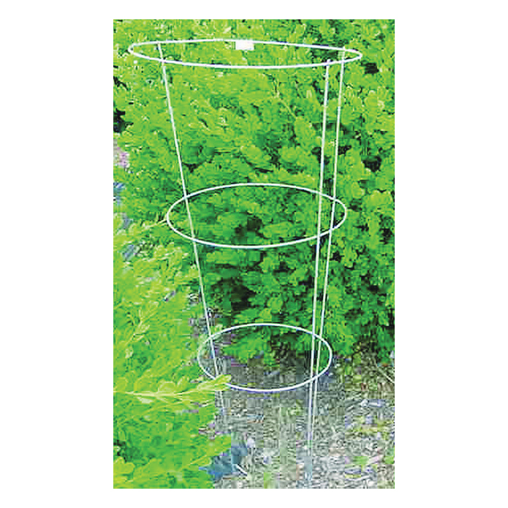 Picture of Glamos Wire 701002 Plant Support, 33 in L, 12 in W, Steel