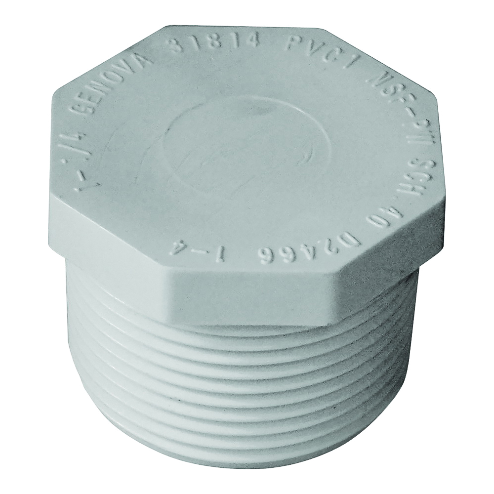 Picture of GENOVA 31814 Pipe Plug, 1-1/4 in, MIP, PVC, White, SCH 40 Schedule