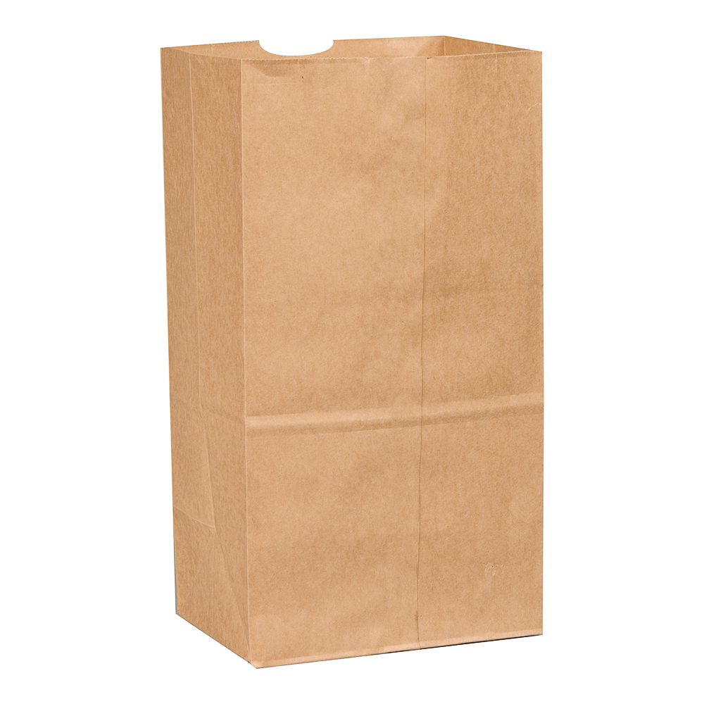 Picture of NOVOLEX 8165 Beer Bag, 25 lb Capacity, Paper