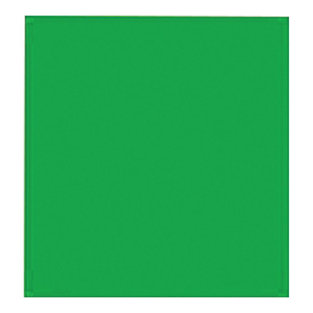 Picture of Santas Forest 68024 Gift Tissue Paper, Green
