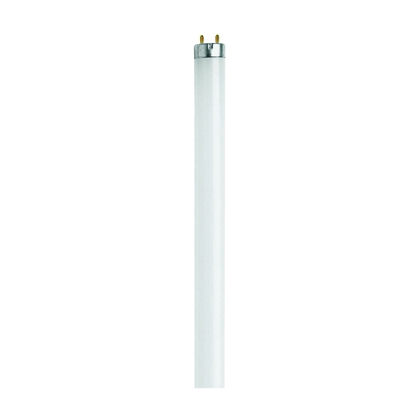 Picture of Feit Electric F20T12/CW/RP Fluorescent Lamp, 20 W, T12 Lamp, Medium G13 Lamp Base, 1200 Lumens, 4100 K Color Temp