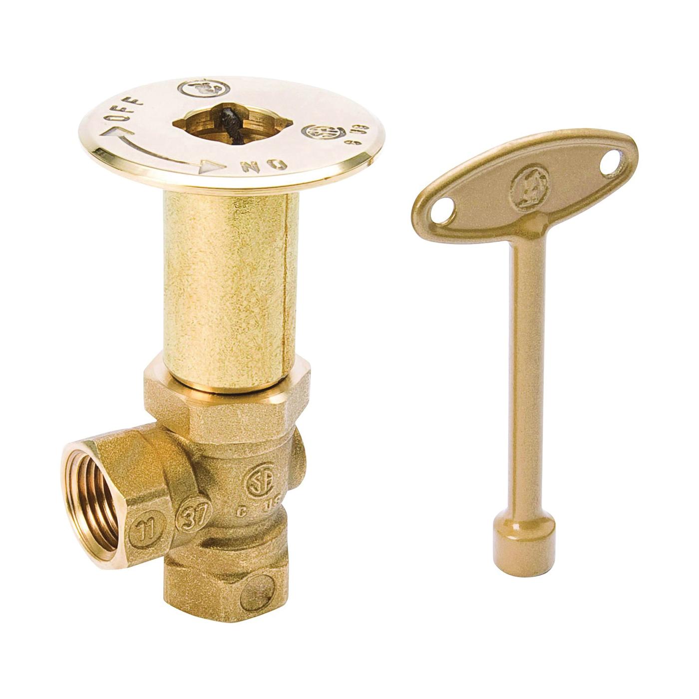 Picture of B & K 118-004 Log Lighter Valve, 1/2 in, Brass