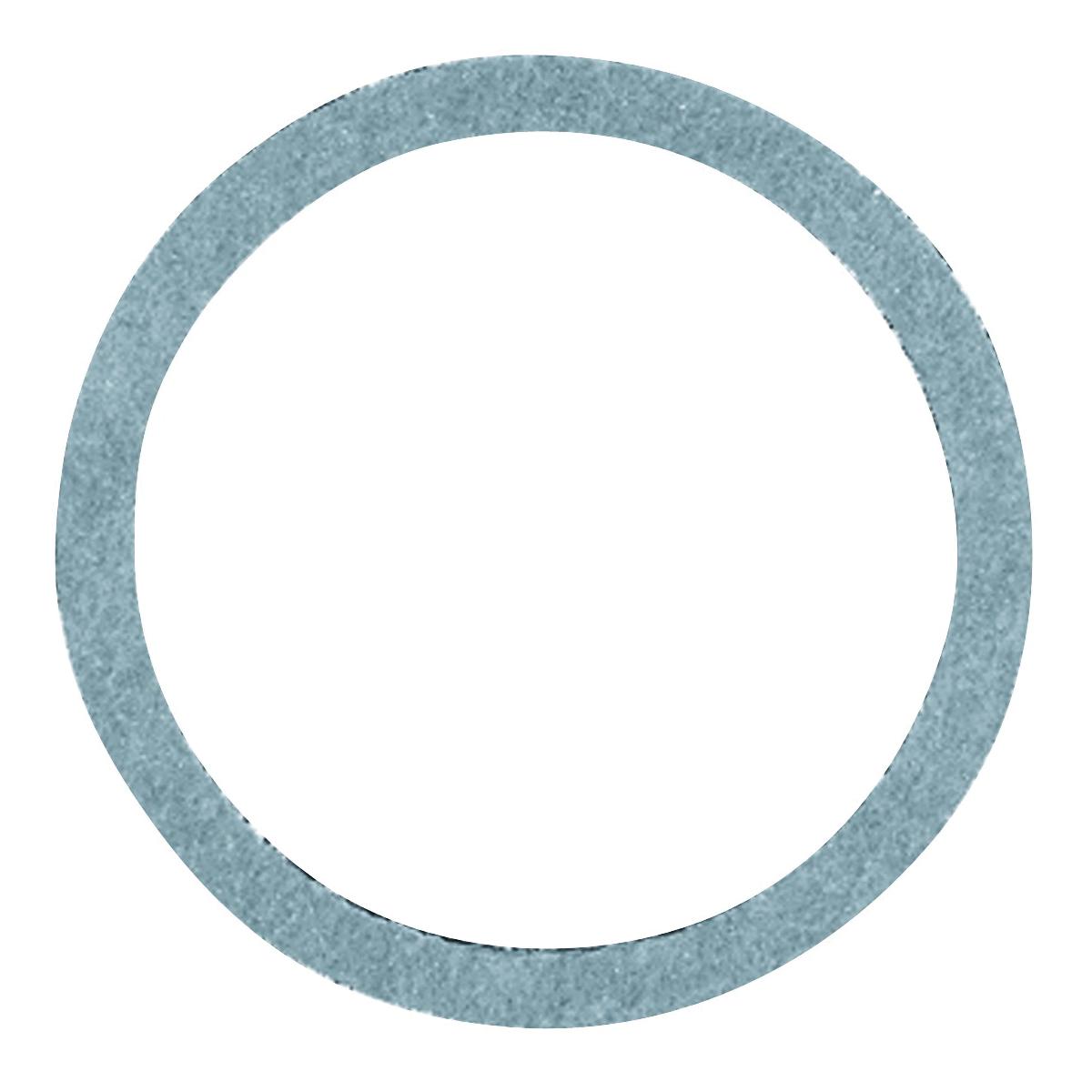 Picture of Danco 35580B Cap Thread Gasket, #45, 7/8 in ID x 1-1/16 in OD Dia, 1/16 in Thick, Nylon