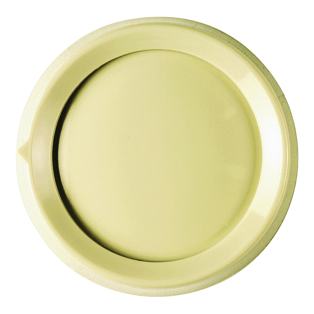 Picture of Lutron RK-IV Replacement Knob, Standard, Plastic, Ivory, Gloss, For: Rotary Push On/Off Dimmer Switches