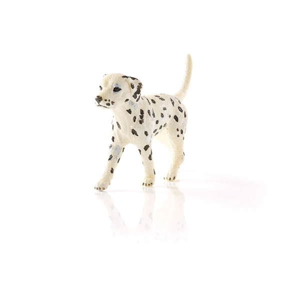 Picture of Schleich-S 16838 Figurine, 3 to 8 years, Dalmatian Male, Plastic