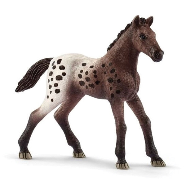 Picture of Schleich-S 13862 Figurine, 5 to 12 years, Appaloosa Foal, Plastic