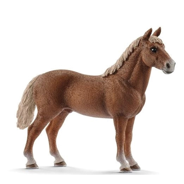 Picture of Schleich-S 13869 Figurine, 3 to 8 years, Morgan Horse Stallion, Plastic