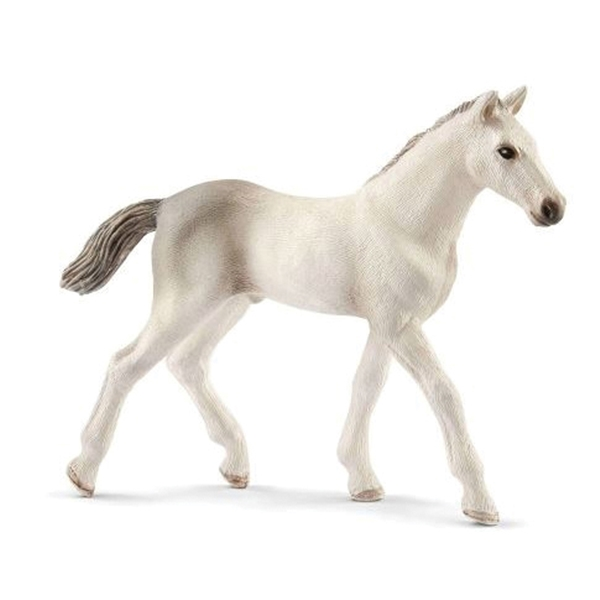 Picture of Schleich-S 13860 Figurine, 5 to 12 years, Holsteiner Foal, Plastic