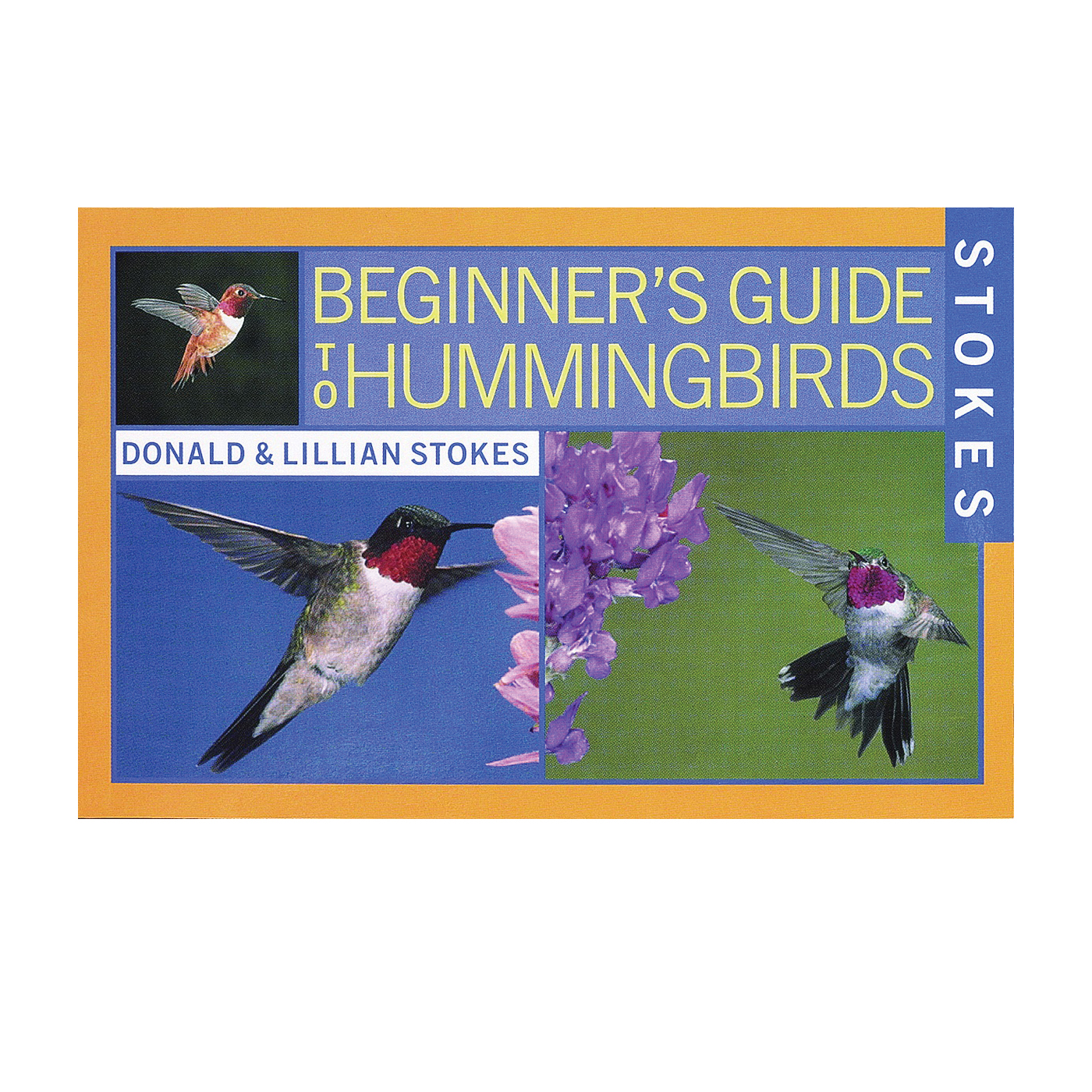 Picture of Stokes Select 38061 Bird Book, Beginner's Guide To Hummingbirds, Author: Donald, Lillian Stokes, 144-Page